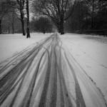 Snowy Kaifu